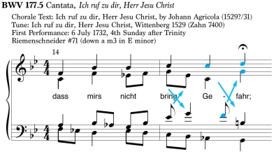 BWV177_5_VC_color.jpg